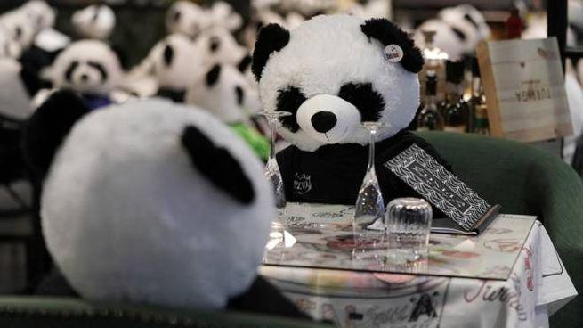 I panda seduti ai tavoli del ristorante Pino, in Germania - Foto: ANSA/EPA/RONALD WITTEK