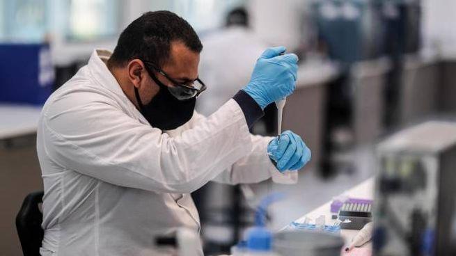Operatore al lavoro sul vaccino anti Covid (Ansa)