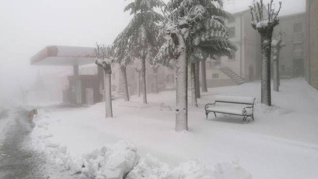 La neve a Capracotta in Molise il 21 novembre 2020 (Ansa)