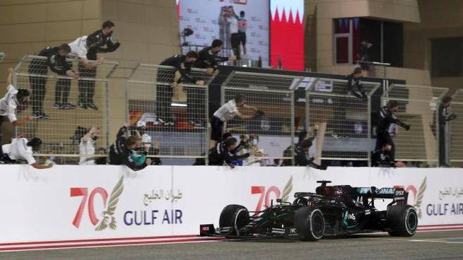 L'arrivo sul traguardo di Lewis Hamilton (Ansa)