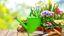 Idee regalo per giardino