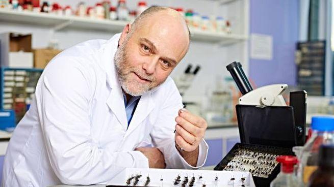 Stefano Vanin, classe 1971, professore di Zoologia e presidente del Gief