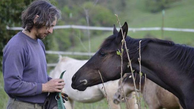Sonny Richichi, presidente della onlus Italian Horse Protection