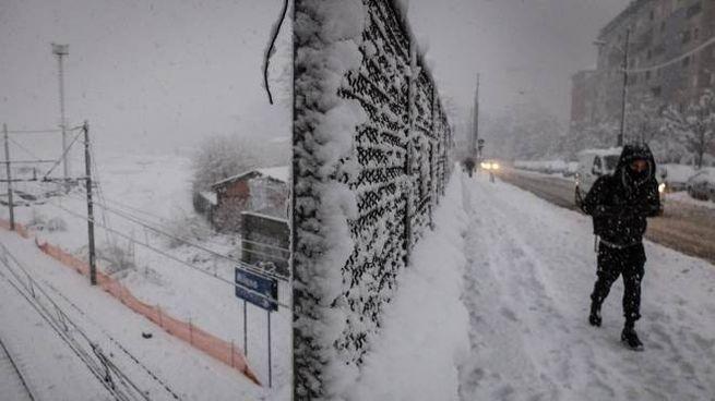 Meteo, Lombardia flagellata dalla neve: alberi caduti, circolazione  bloccata e blackout - Cronaca
