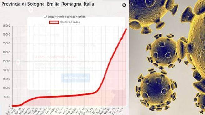 Covid: l'andamento dei contagi in provincia di Bologna