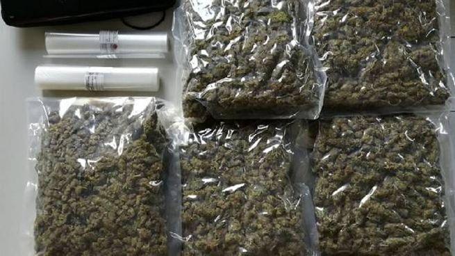 La marijuana suddivisa in confezioni sottovuoto, sequestrata dalla Polizia.