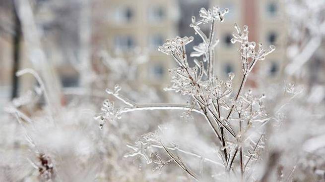 Meteo, sarà un sabato freddo in Italia