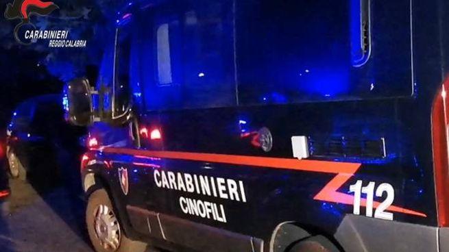 'Ndrangheta, l'operazione Faust: 49 arresti