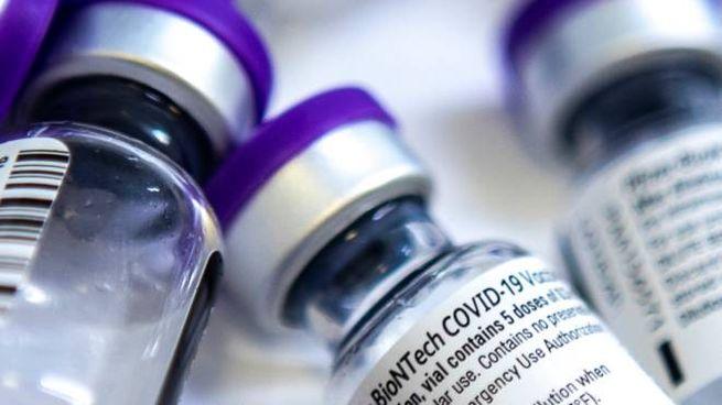 Le fiale del vaccino Covid della Pfizer (ImagoE)
