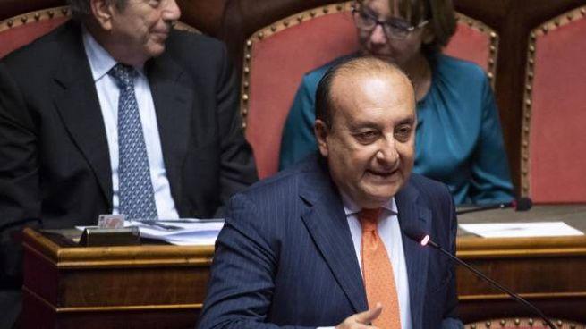 Il senatore di Forza Italia, Luigi Vitali (Ansa)