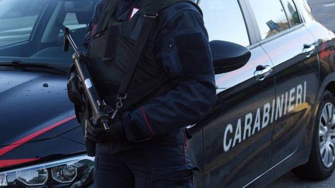 Carabinieri, foto generica (Ansa)