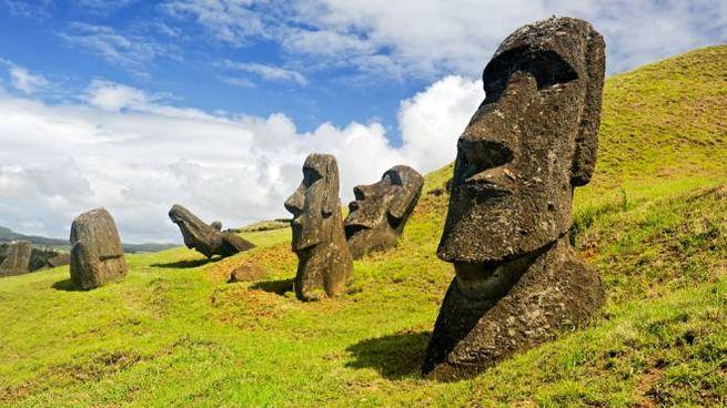 Nel vulcano di Rapa Nui crescono delle varietà di vite lasciate dai coloni francesi