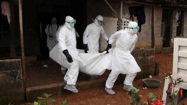 Personale sanitario porta via un morto di Ebola durante l'epidemia del 2014-16 (Ansa)