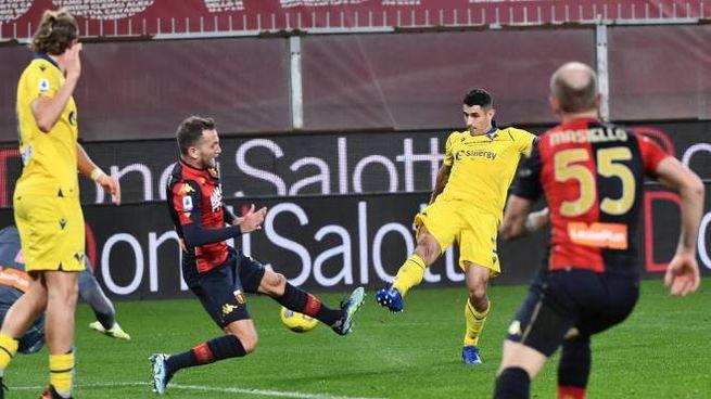 Genoa-Verona 2-2 (Ansa)