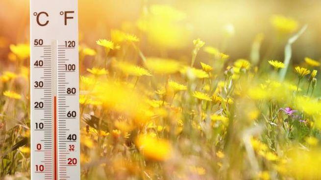 Meteo venerdì 26 febbraio: sole e caldo primaverile