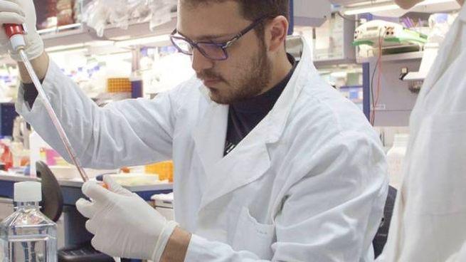 Un ricercatore al lavoro (sito ufficiale Telethon)