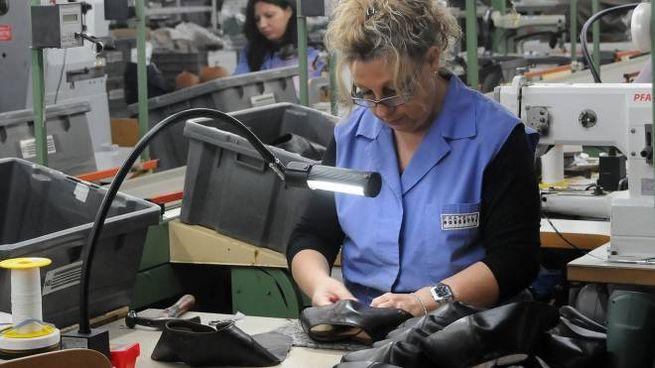 premium selection d78ef 89858 Apre Zalando, in arrivo 350 nuovi posti di lavoro a ...