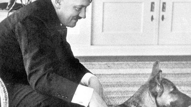 Adolf Hitler con la sua Blondie, un pastore tedesco