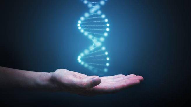 """Il DNA """"ambientale"""" si può estrarre da suolo, neve, acqua e aria"""