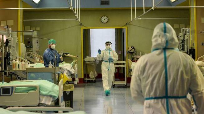 Covid, reparto di terapia intensiva (Ansa)