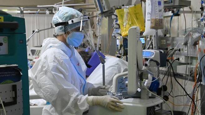 Covid, i vaccini accelerano l'uscita dalla pandemia