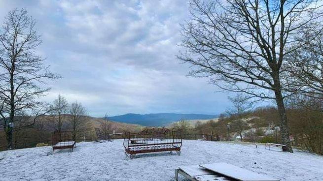 Neve a Castelnuovo (foto di Tenuta Codirosso).