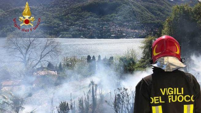 A Carate Urio un incendio è scoppiato tra le sterpaglie sulla riva