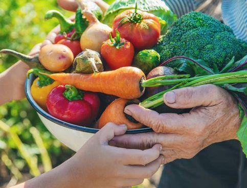 È importante scegliere i prodotti km0 per non inquinare, così come preferire alimenti con etichetta 'bio' perché su di essi non sono stati usati fertilizzanti chimici