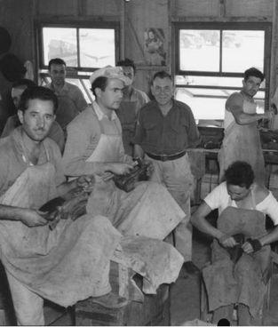 Un gruppo di italiani prigionieri e calzolai nel campo numero 12 di Cowra (Australia)