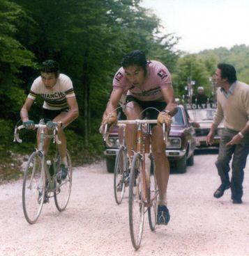 Eddy Merckx in maglia rosa seguito da Felice Gimondi: infiniti ed epici i loro duelli