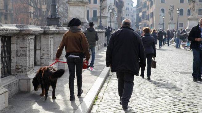 Passeggiata di famiglia (Foto L.Gallitto)