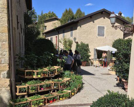 Uno scorcio dell'Antico Borgo Le Viole a Telarolo di Castellarano