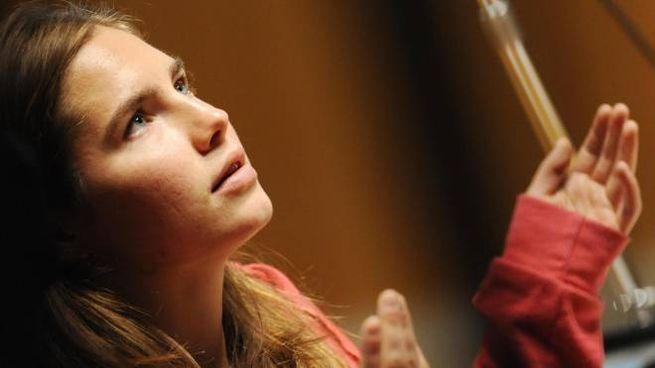 Amanda Knox (Ansa)