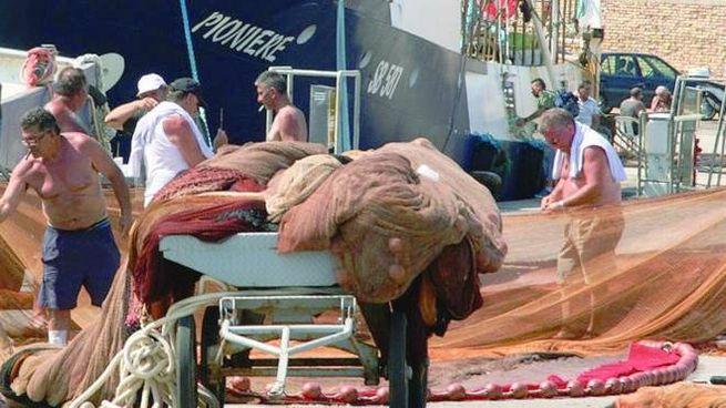 Le barche potranno tornare in mare (foto Sgattoni)