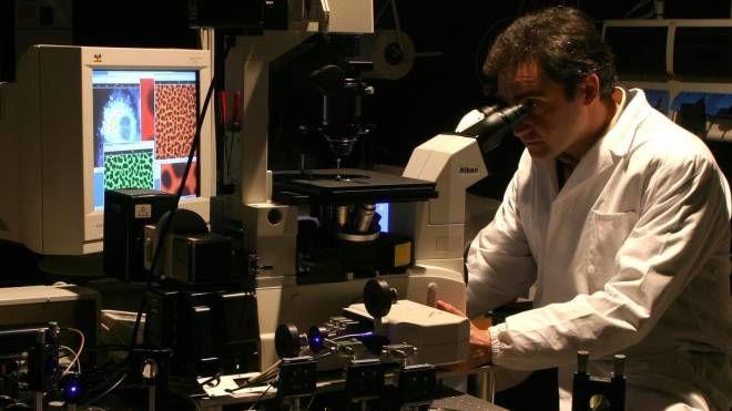 I materiali progettati dal team guidato da Michele Muccini sono 'nanostrutturali' (foto Righi - Meridiana)