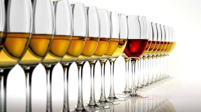 La produzione vinicola di Donatella Cinelli Colombini ha riscosso numerosi premi