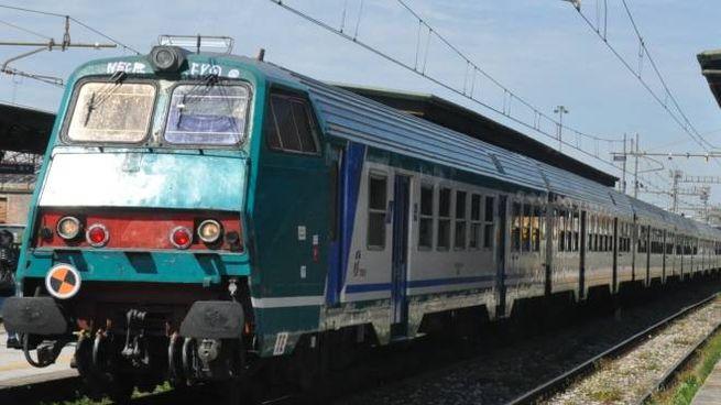 Treno (foto Germogli)