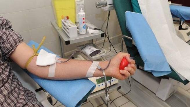 Donazioni di sangue (foto di archivio)