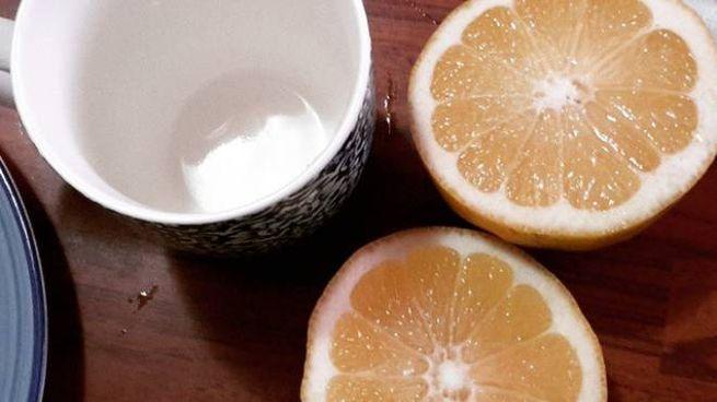Acqua E Limone La Sera.Beve Miele Limone E Acqua Calda Ogni Mattina Per Un Anno Ecco