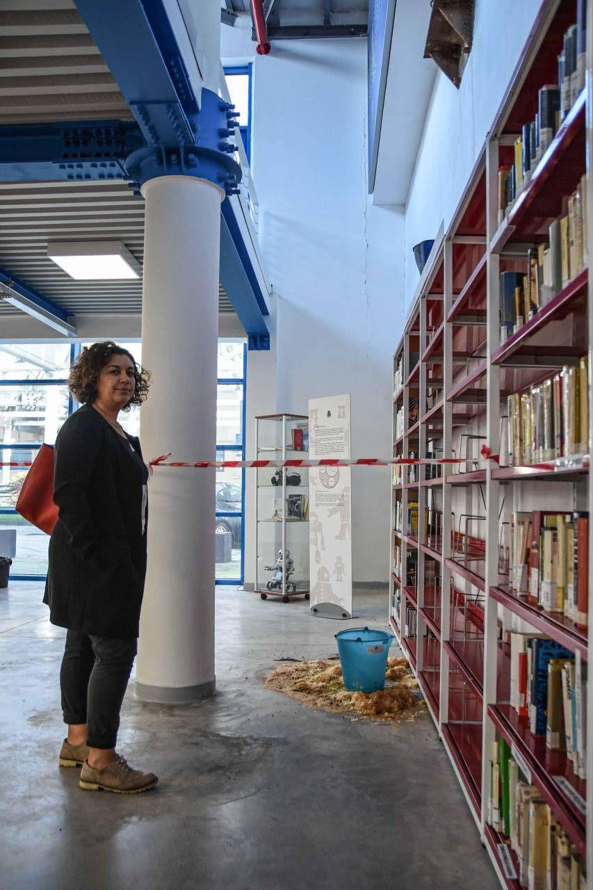"""Noi, bibliotecari appesi ad un filo"" - Cronaca - lanazione.it"