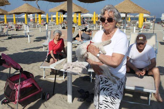 Da casal borsetti a lido di savio ecco la mappa delle spiagge per cani cronaca - Bagno italia giuliana ...