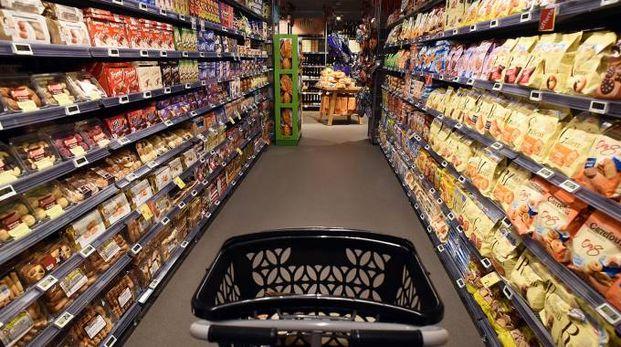 Maxi spesa di generi alimentari