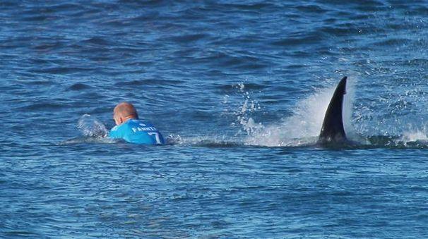 Mick Fanning inseguito dallo squalo in Sud Africa (AFP)