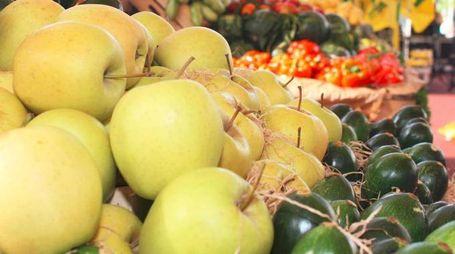 Un banco di frutta