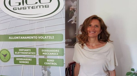 Angela Pedrazzi
