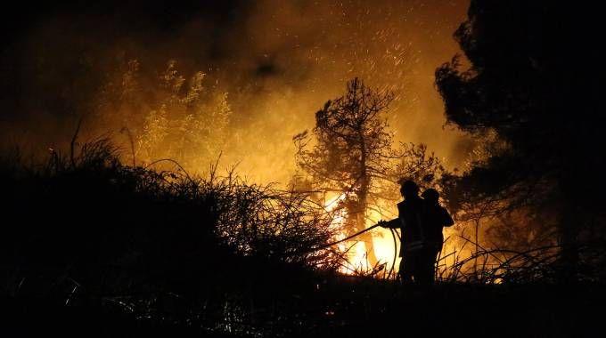 Tempestivamente intervenuti, i vigli del fuoco in un'ora hanno spento l'incendio di martedì sera sul San Bartolo