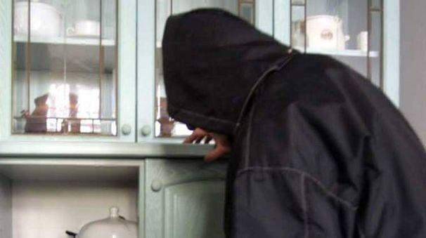 Un ladro in azione (Foto di repertorio Ravaglia)