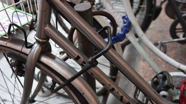 Biciclette legate in una rastrelliera in centro