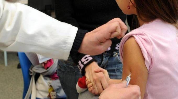 Vaccini (foto Ansa)