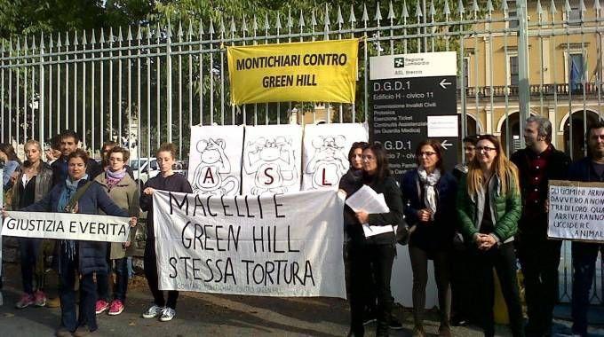 SIT IN  Gli attivisti hanno manifestato con cartelli  e striscioni per chiedere  maggiore trasparenza sulle condizioni degli animali
